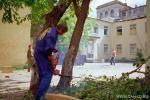 Удаление дерева среди строений с помощью оттяжек