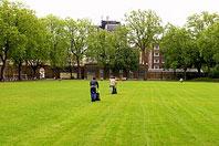 Рис.7 Спортивный газон на детской игровой площадке