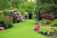 Рис.4 Многолетний красивоцветущий газон. Англия