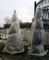 рис.14 укрытие деревьев на зиму