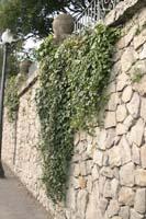 Рис.17 Непроницаемый забор из природного камня